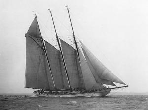 The Schooner Karina at Sail, 1919 by Edwin Levick