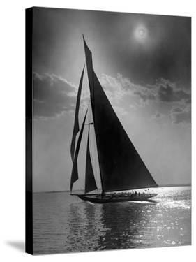 The Vanitie During the America's Cup, CA. 1900-1910 by Edwin Levick