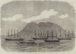 Arrival of the Channel Fleet with the Lords of the Admiralty at Gibraltar by Edwin Weedon