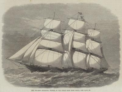 The Tea-Ship Spindrift, Winner of the Ocean Race from China by Edwin Weedon