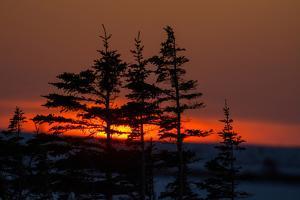Winter Sunset by EEI_Tony