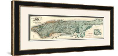Sanitary and Topographical Map of the City and Island of New York, c.1865 by Egbert L. Viele