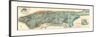 Sanitary and Topographical Map of the City and Island of New York, c.1865