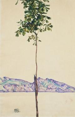 Little Tree (Chestnut Tree at Lake Constance) by Egon Schiele