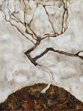 Small Tree in Late Autumn, 1911 by Egon Schiele