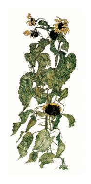 Sunflowers, c.1917 by Egon Schiele