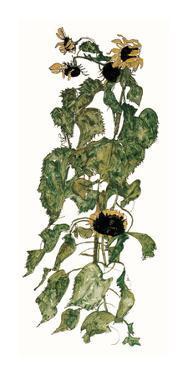 Sunflowers, c.1917 by Egon Schiele