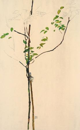 Young Tree by Egon Schiele