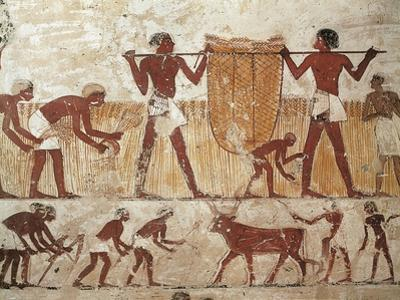 Egypt, Ancient Thebes, Shaykh 'Abd Al-Qurnah, Mural of Farmers at Work