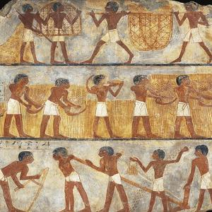 Egypt, Thebes, Tomb of Unsu, Scene of Sowing and Harvesting