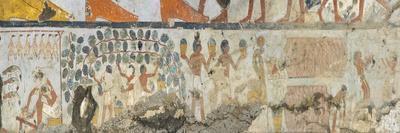 https://imgc.allpostersimages.com/img/posters/egypt-tomb-of-standard-bearer-of-pharaoh-pehsukher-mural-paintings-vine-harvest_u-L-PRLODL0.jpg?p=0