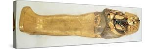 The Innermost Coffin of the King, from the Tomb of Tutankhamun by Egyptian 18th Dynasty