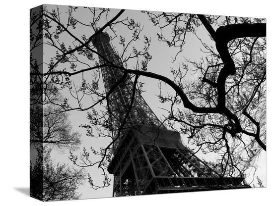 Eiffel III-Tom Artin-Stretched Canvas Print