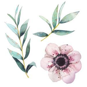 Watercolor Flowers Elements by Eisfrei