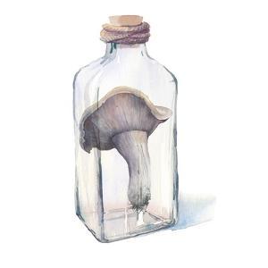 Watercolor Mushroom in Glass Bottle by Eisfrei