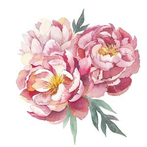 Watercolor Peonies Bouquet by Eisfrei