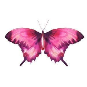Watercolor Red Butterfly with Ruby by Eisfrei