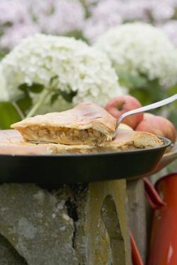 Apple Pie on a Stone Post by Eising Studio - Food Photo and Video