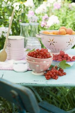Apricots, Berries and Jam Jars on Garden Table by Eising Studio - Food Photo and Video