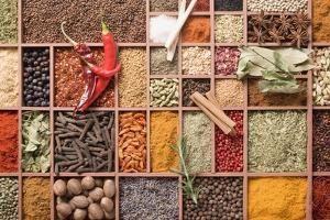 Assorted Spices in Type Case by Eising Studio - Food Photo and Video