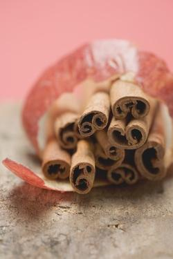 Cinnamon Sticks with Apple Peel by Eising Studio - Food Photo and Video