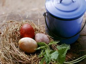 Coloured Eggs in Straw Nest; Blue Milk Can by Eising Studio - Food Photo and Video