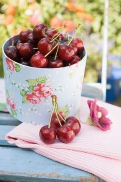 Fresh Cherries on a Garden Table by Eising Studio - Food Photo and Video