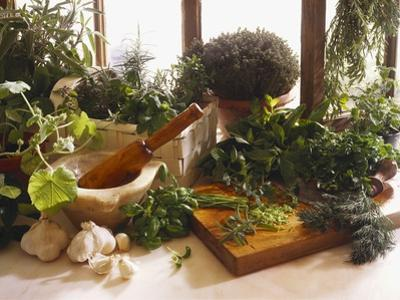Fresh Herb Still Life by Eising Studio - Food Photo and Video