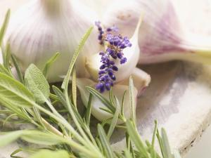 Fresh Herbs and Garlic by Eising Studio - Food Photo and Video