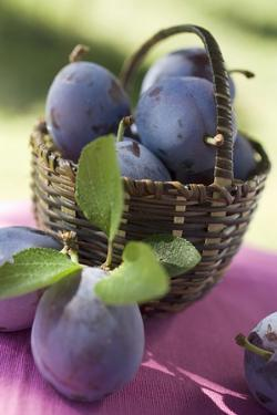 Fresh Plums in a Basket by Eising Studio - Food Photo and Video