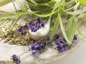 Herbs and Spices by Eising Studio - Food Photo and Video