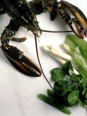 Lobster, Asparagus, Sorrel, Watercress, Mangetout by Eising Studio - Food Photo and Video