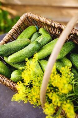 Pickling Cucumbers and Dill in a Basket by Eising Studio - Food Photo and Video