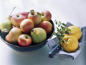Still Life with Apples, Pears and Quinces by Eising Studio - Food Photo and Video
