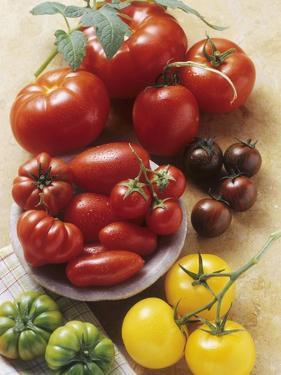 Still Life with Various Types of Tomatoes by Eising Studio - Food Photo and Video
