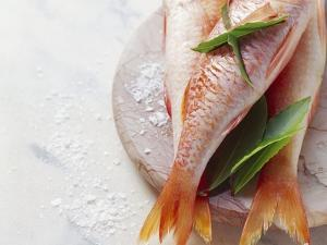 Three Red Mullet with Bay Leaves by Eising Studio - Food Photo and Video