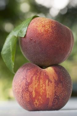 Two Peaches with Leaf by Eising Studio - Food Photo and Video