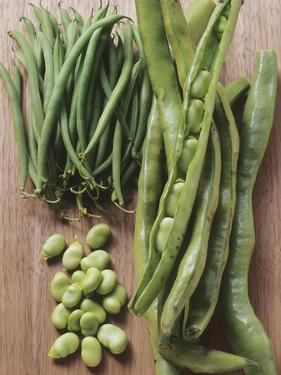 Various Kinds of Beans by Eising Studio - Food Photo and Video