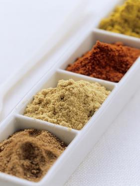 Various Spices in Bowls (For Curry) by Eising Studio - Food Photo and Video