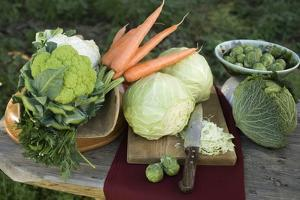 Various Types of Brassicas and Carrots by Eising Studio - Food Photo and Video