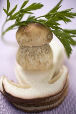 Whole Cep, Cep Slices and Parsley by Eising Studio - Food Photo and Video