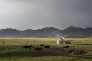 Lake Song-Kol, Kyrgyzstan, Central Asia by Eitan Simanor