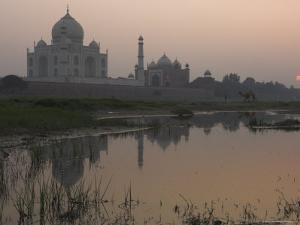 View at Dusk Across the Yamuna River of the Taj Mahal, Agra, Uttar Pradesh State, India by Eitan Simanor