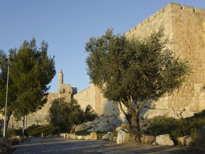 View at Sunset of the City Walls Promenade with Tower of David in Background, Old City, Jerusalem,  by Eitan Simanor