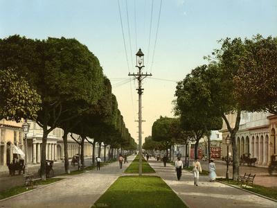 https://imgc.allpostersimages.com/img/posters/el-prado-looking-north-havana-1904_u-L-PPQV7Y0.jpg?p=0