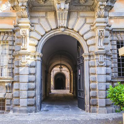https://imgc.allpostersimages.com/img/posters/elaborate-entry-way-in-italy_u-L-Q1AGS4E0.jpg?p=0