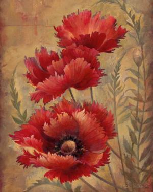 Poppy Passion II by Elaine Vollherbst-Lane