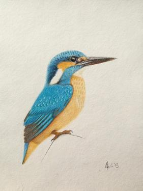 Kingfisher, 2013, by Ele Grafton