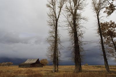 Autumn (Fall) Storm Approaches