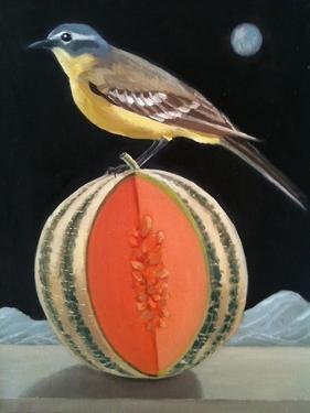 Bird on a Melon by ELEANOR FEIN